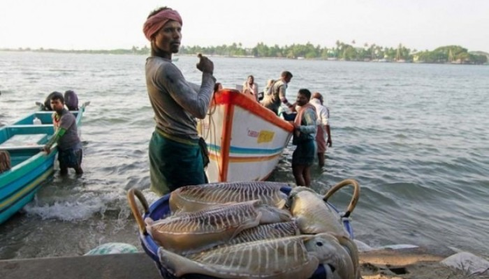 Fishermen issue needs to be handled in humanitarian manner: MEA