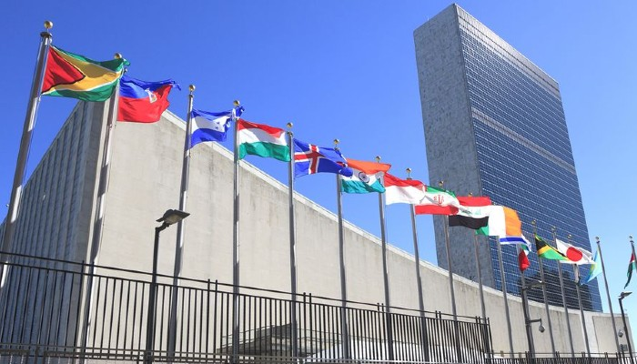Need a balanced approach on Myanmar: India at UNSC