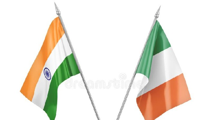 India, Ireland hold consultations on UNSC issues