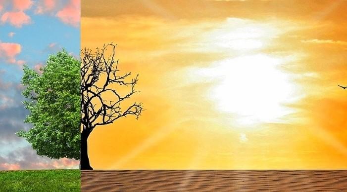 उचित मौसम कार्यका लागि राज्यको कमजोर जोखिम जिल्लाको नक्साङ्कन गरियो।