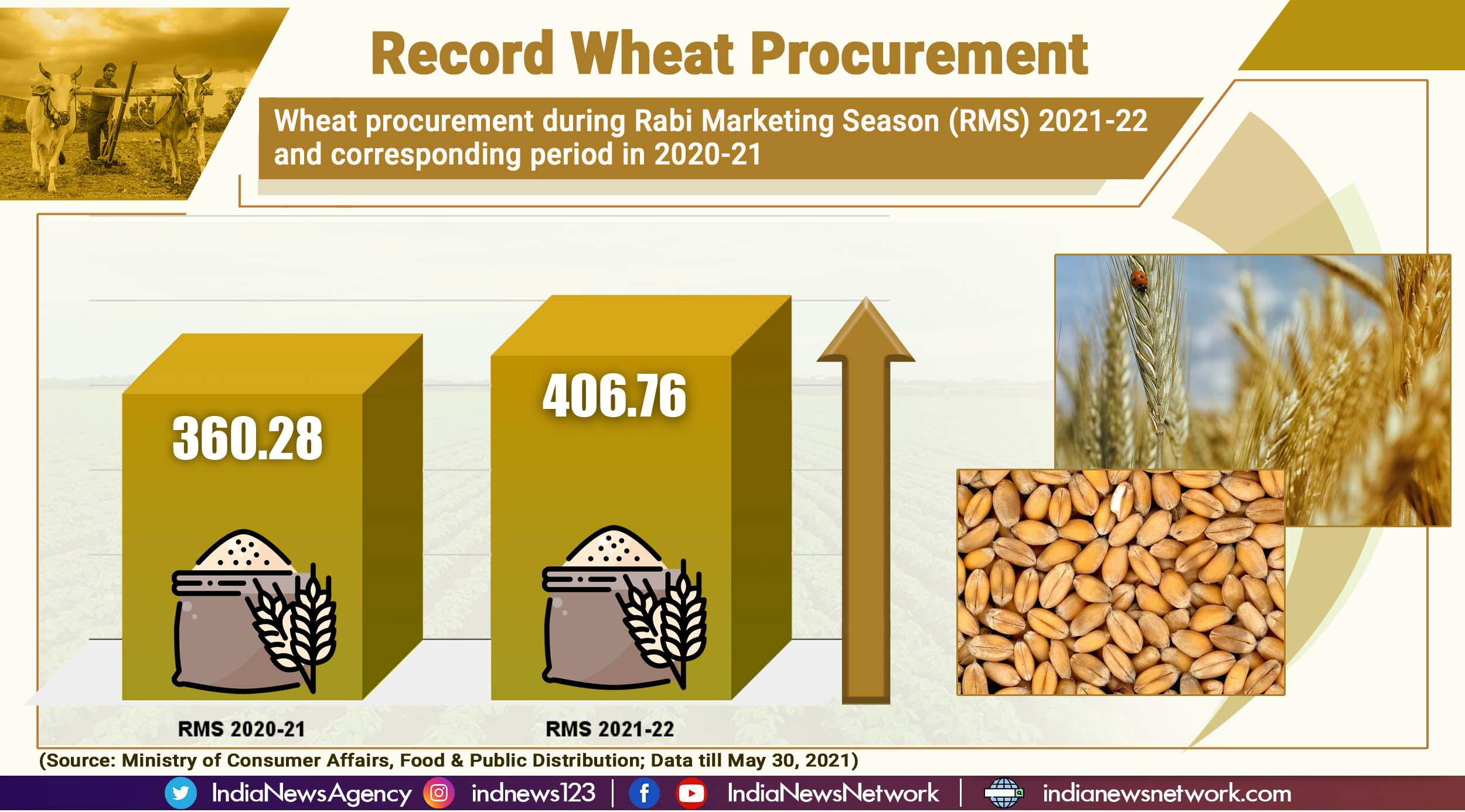 13% more wheat procured over corresponding period last year