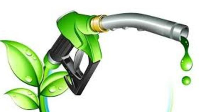 Ethanol, bio-fuel cheaper and better option of petrol and diesel: Gadkari