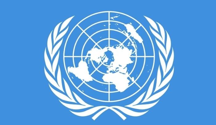 'दुर्भाग्यपूर्ण, सत्ता को दुरुपयोग': खोरी गाउँ व्यवस्था मा संयुक्त राष्ट्र का विशेषज्ञ को बयानमा भारतको प्रतिक्रिया
