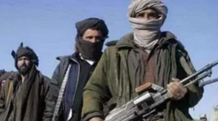पाकिस्तानमा १२ वटा विदेशी आतंकवादी संगठनहरु रहेका छन्: प्रतिवेदन