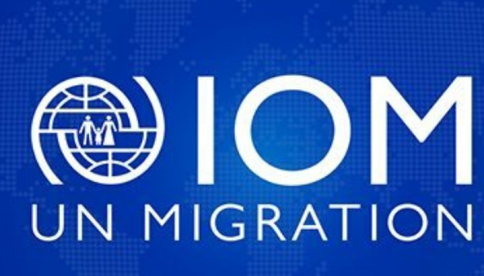 'Prepared to play a role in building consensus on migration and mobility': India at Geneva meet